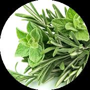 Grow_herbs
